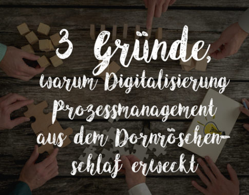 3 Gründe, warum Digitalisierung Prozessmanagement aus dem Dornröschenschlaf erweckt